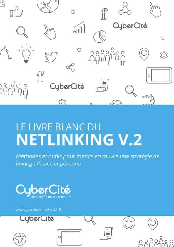 couv-livre-blanc-netlinking